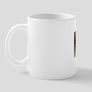 carlsbad1b Mug