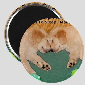 Golden Retriever Puppies, Mahatma Gandhi Qu Magnet