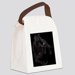 Todd toon blck Canvas Lunch Bag