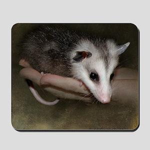 Possum child SQ 10 Mousepad