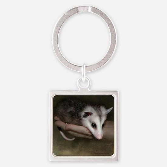 Possum child SQ 10 Square Keychain