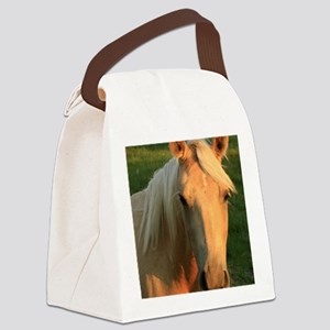 palimino horse 16x20 Canvas Lunch Bag