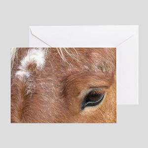 Niki shirt Greeting Card