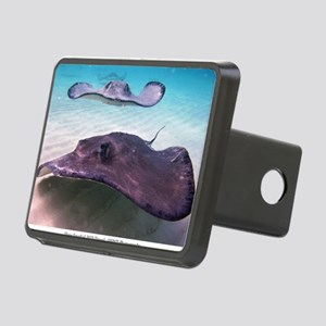 Here They Come for CP Rectangular Hitch Cover