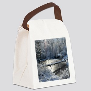 IMG_3344 20x20 co Canvas Lunch Bag