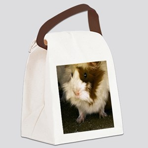 (12p) Guinea Pig    9280 Canvas Lunch Bag