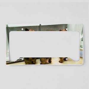Joespuppiesrectfl License Plate Holder