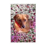 Trista the Rescue Dog in Flowers Mini Poster Print