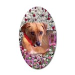 Trista Rescue Dog Flowers 35x21 Oval Wall Decal