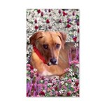 Trista the Rescue Dog in Flowers 35x21 Wall Decal