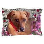 Trista the Rescue Dog in Flowers Pillow Case