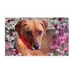 Trista the Rescue Dog in Flowers 3'x5' Area Rug