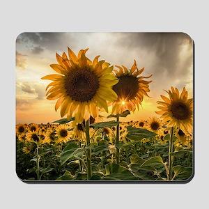 Sunflower Starburst Mousepad
