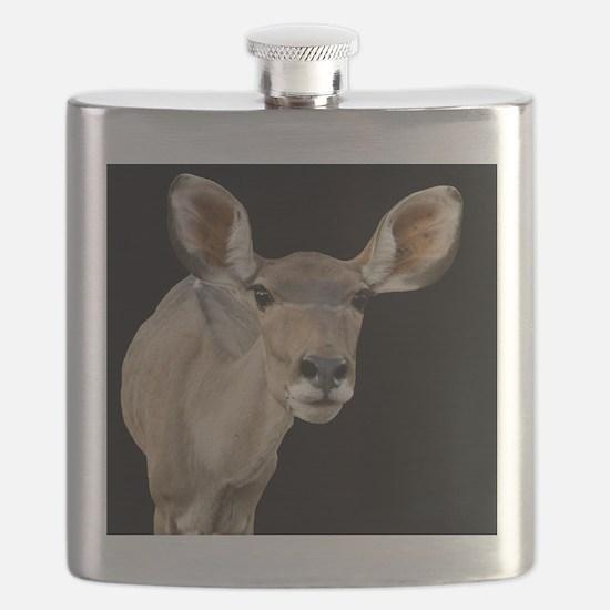 (15) kudu ears 2 Flask
