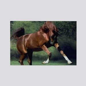blanket1 Rectangle Magnet