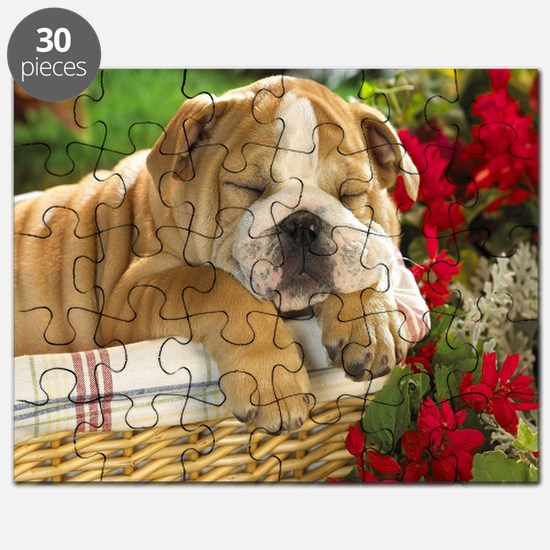 blanket10 Puzzle