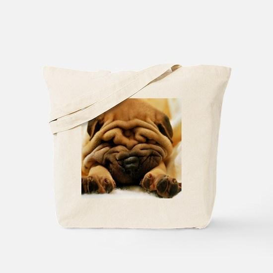 blanket12 Tote Bag