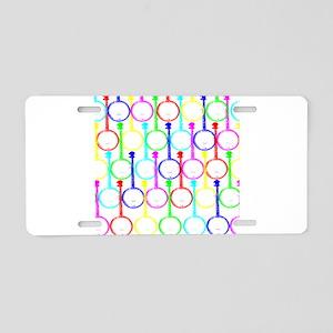 Banjo Rainbow Aluminum License Plate