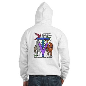 Hooded Sweatshirt - Surrounded on back