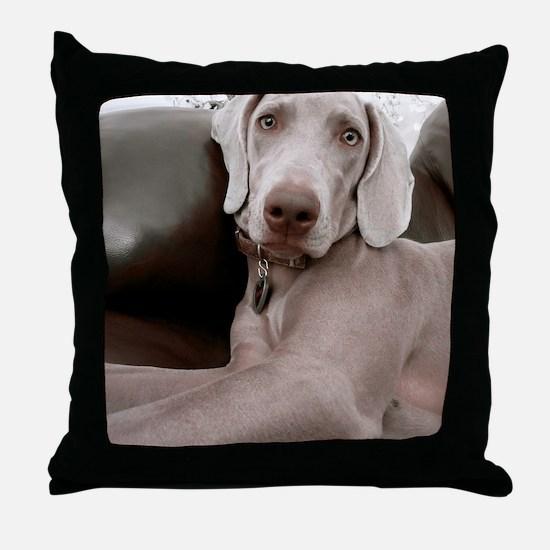 Sandy Throw Pillow