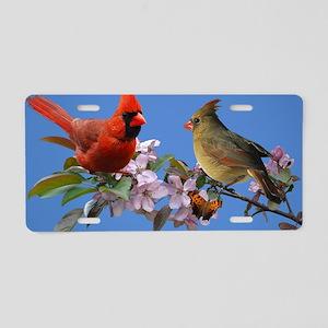 9x12_print Aluminum License Plate