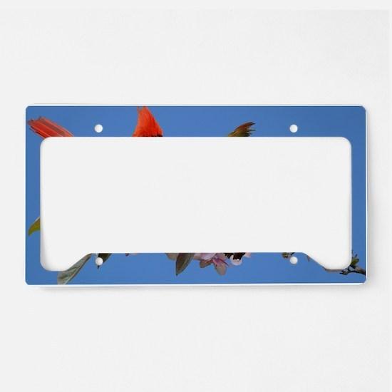 14x10_print License Plate Holder