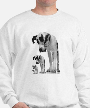 Down the line Danes Sweatshirt