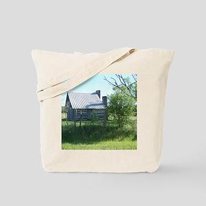 100_1692 Tote Bag