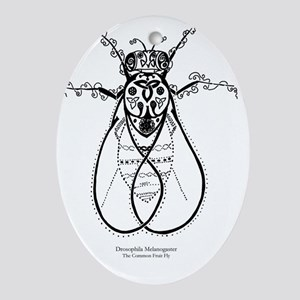 2-fly with words Oval Ornament