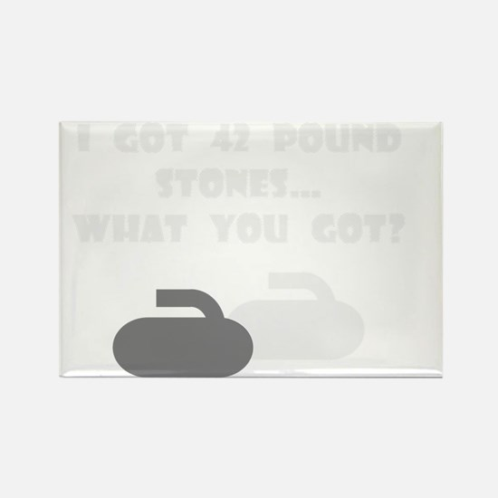 42PoundStonesDarkTee Rectangle Magnet