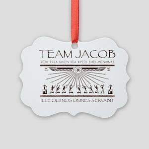 Team Jacob Picture Ornament