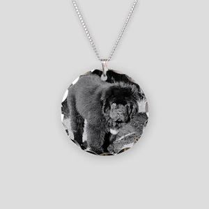 IMG_4139 Necklace Circle Charm