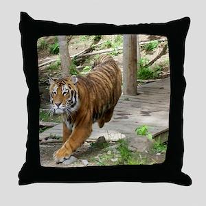 11x9 Kochime7 - Running 1 Throw Pillow
