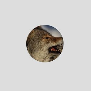 coyote vole portrait Mini Button