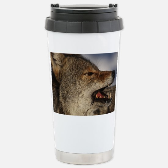 coyote vole portrait Stainless Steel Travel Mug
