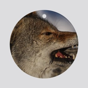 coyote vole portrait Round Ornament