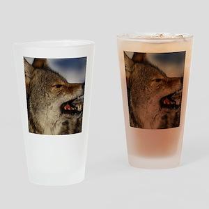 coyote vole portrait Drinking Glass