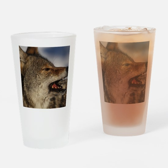 coyote vole portrait Drinking Glass