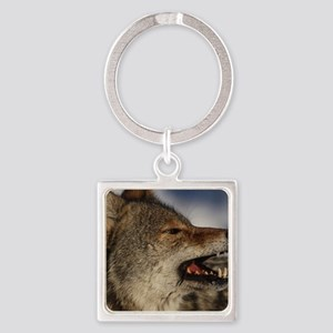 coyote vole portrait Square Keychain