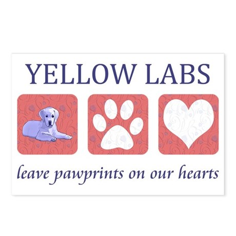 FIN-labs-yellow-CROP Postcards (Package of 8)