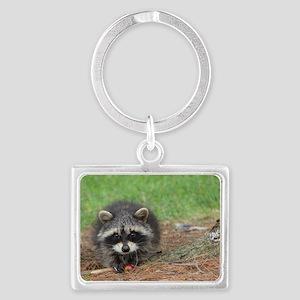 Raccoon Landscape Keychain