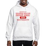 Broken Heart University Hooded Sweatshirt