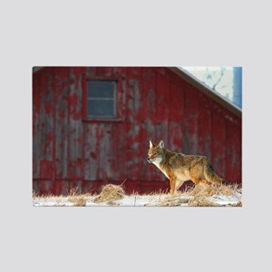 coyote barn Rectangle Magnet