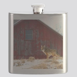 coyote barn Flask