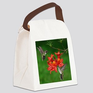 11x11_pillow 2 Canvas Lunch Bag