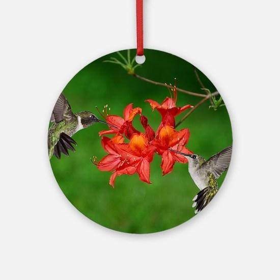 9x12_print 2 Round Ornament