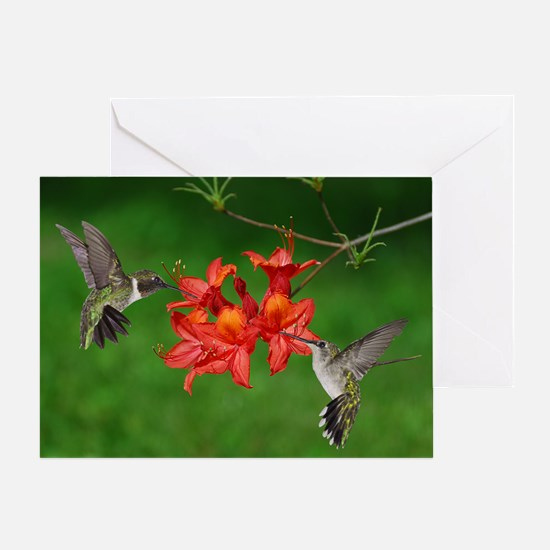 9x12_print 2 Greeting Card