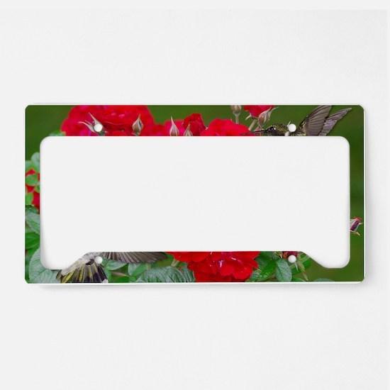 9x12_print 4 License Plate Holder