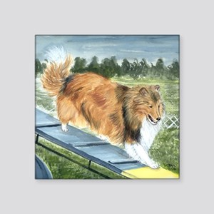 "Agility Shetlie Square Sticker 3"" x 3"""