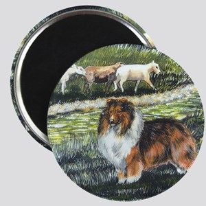 sable sheltie with sheep Magnet